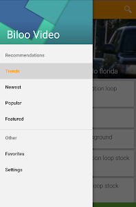screenshot of Biloo Video Effects version 14