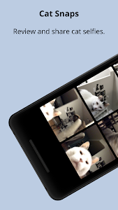 screenshot of Cat Snaps - Photo Selfies for Cats version 1.1.8