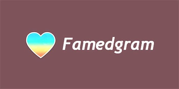 screenshot of Famedgram Likes&Followers version 4.0