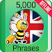 Speak English - 5000 Phrases & Sentences