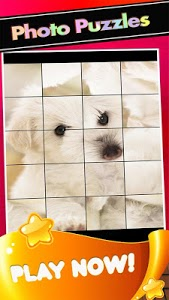 screenshot of Puppies Pictures-Puppy Dogs Puzzle Game version 1.1.3